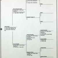 Pedigree Chart for Jacob Zulauf