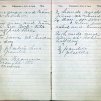1904 Diary August 3-4