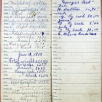 1899 Diary Addresses Page 4 & 5