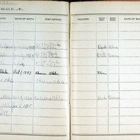 Thomas Family Record Book pages 238 & 239